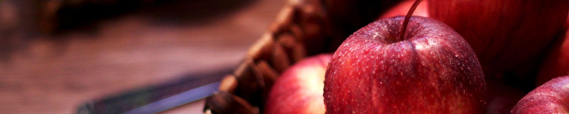 SUN-SAD dostępność owoców banner