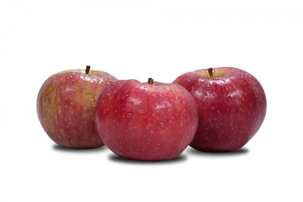 Jabłko Alwa