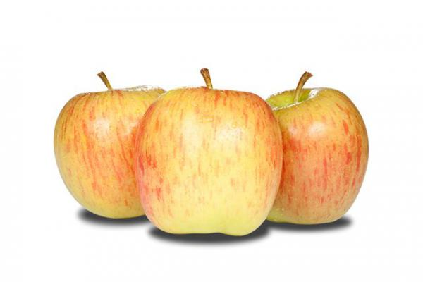 Jablko Celeste