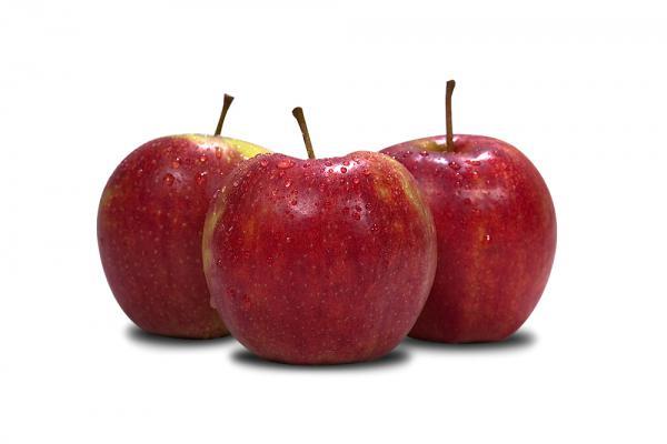 Jabłko Jonagored