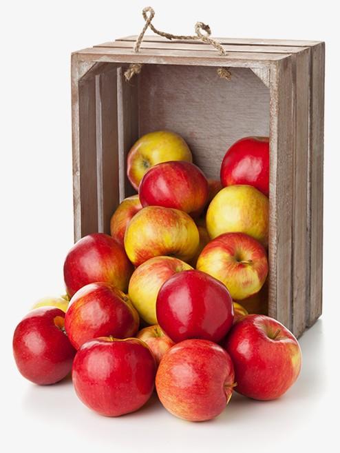 SUN-SAD skrzynka z jabłkami